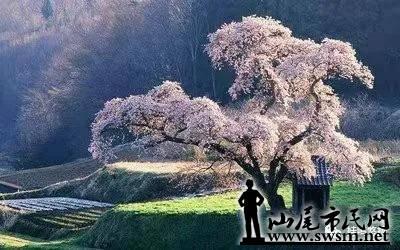 微信图片_20210321233334.jpg