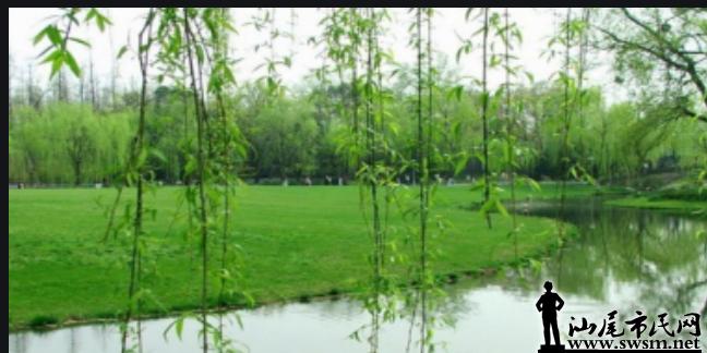 春雨10.png